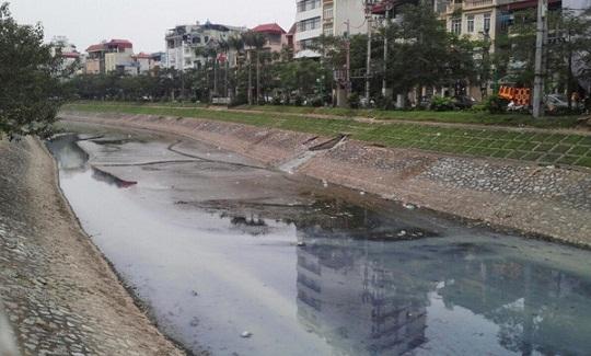 Sông Kim Ngưu bị ô nhiễm